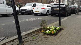 Guerrilla gardening in Comyn Road,...